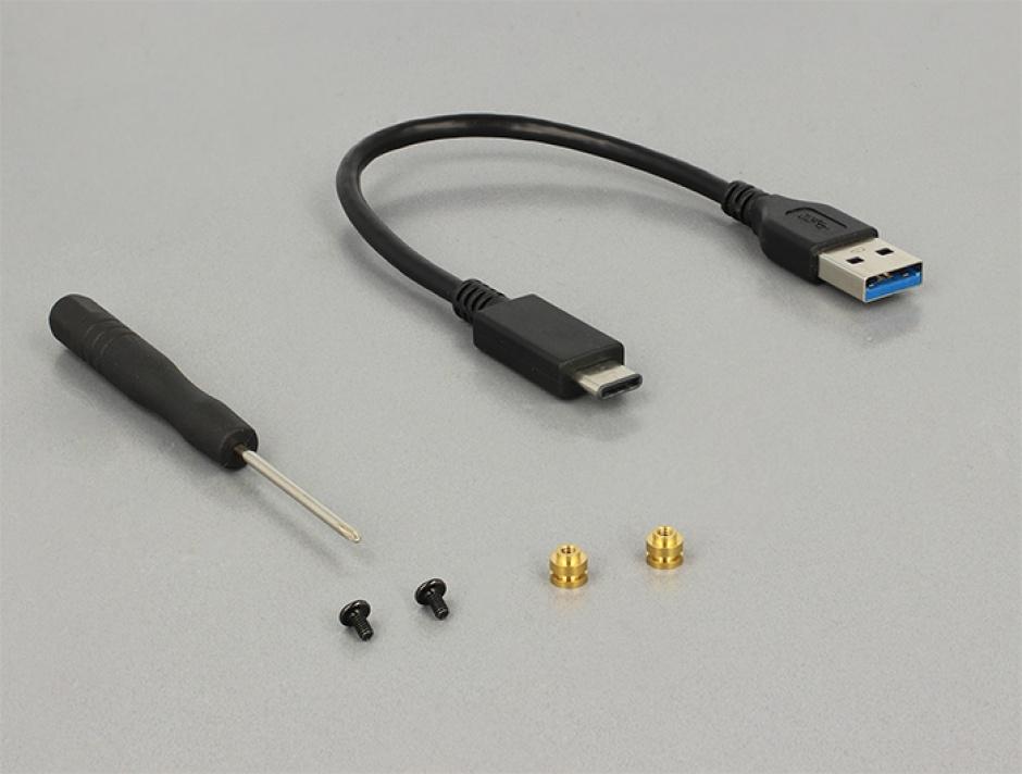 Imagine Rack extern M.2 SSD key B 42 mm la USB 3.1 tip C, Delock 42572