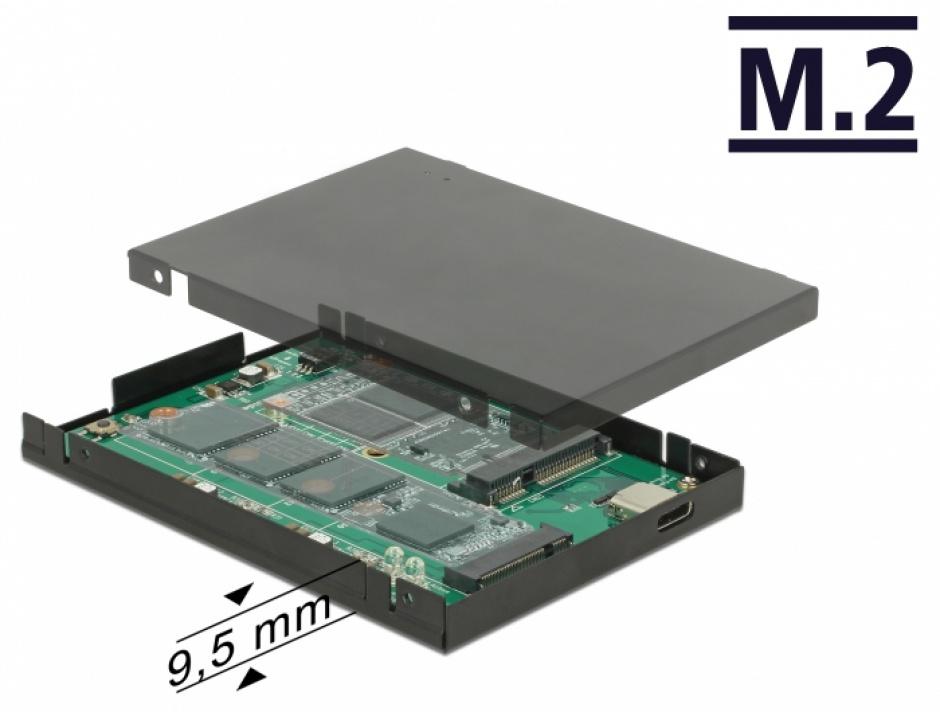 """Imagine Rack extern 2.5"""" USB 3.1-C la M.2 + mSATA pana la 9.5mm, Delock 62986"""