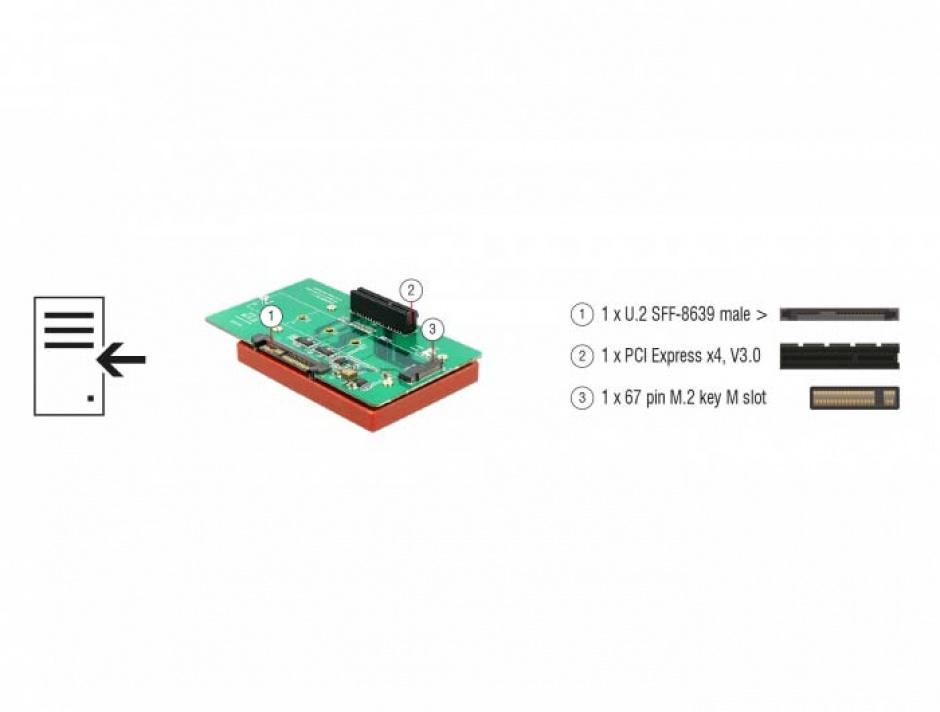 Imagine Adaptor U.2 SFF-8639 la PCIe/M.2 Key M slot, Delock 63951-5