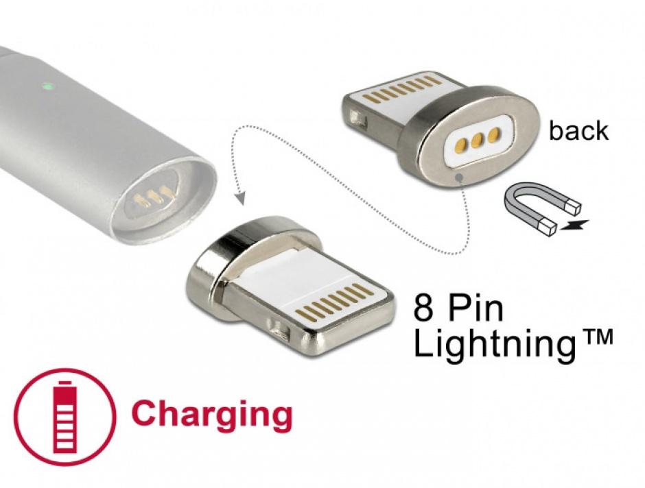 Imagine Conector magnetic pentru incarcare iPhone Lightning pentru 85705/85725, Delock 65928