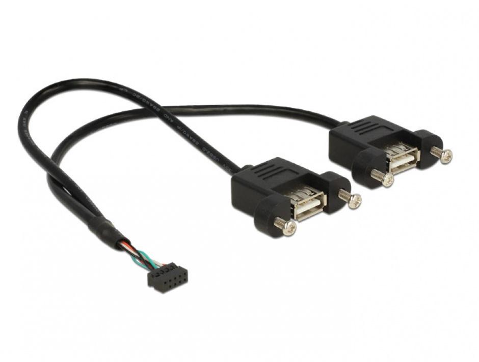 Imagine Cablu USB 2.0 pin header female 2.00 mm 10 pini la 2 x USB 2.0-A 25cm, Delock 84832-1