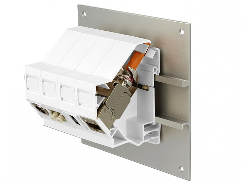 Imagine Suport de montare Keystone pentru DIN rail, Delock 86212