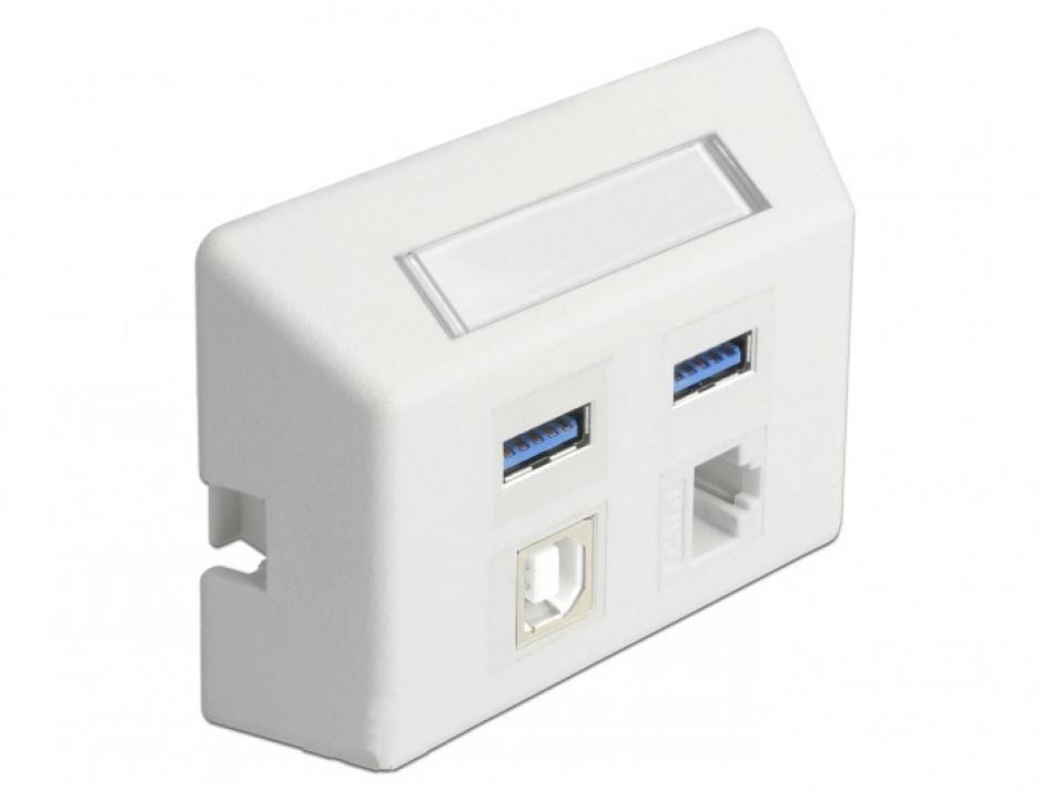 Imagine Priza cu 4 porturi Keystone pentru instalare mobila Alb, Delock 86293-2