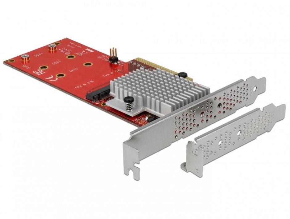 Imagine PCI Express cu 2 porturi interne NVMe M.2 Key M LPFF, Delock 90305-1