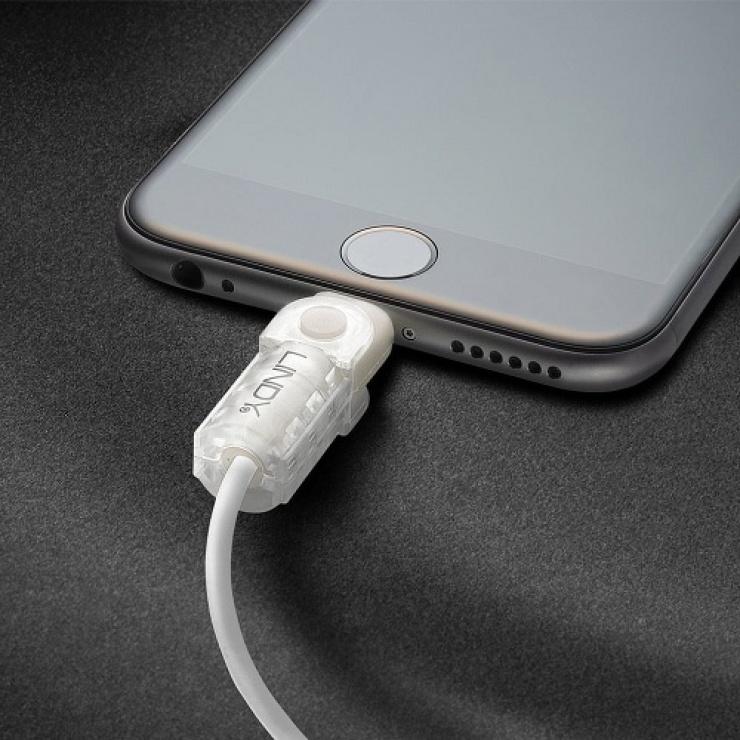 Imagine Kit de protectie pentru interfata Lightning + USB-A transparent, Lindy L31385-1