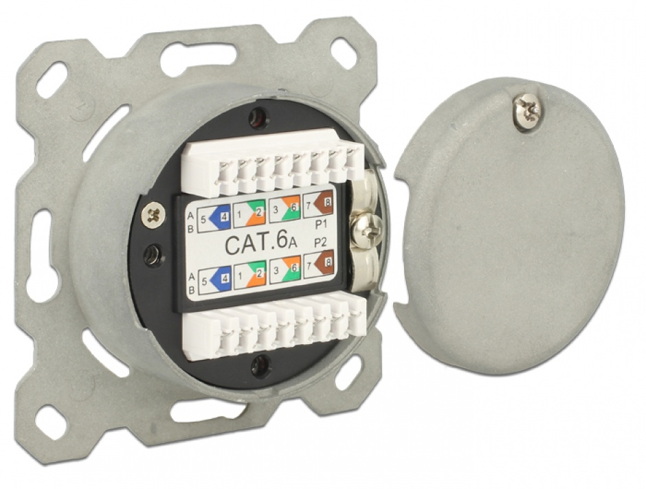 Imagine Priza Modulara ingropata 2 porturi Cat.6A LSA, Delock 86195