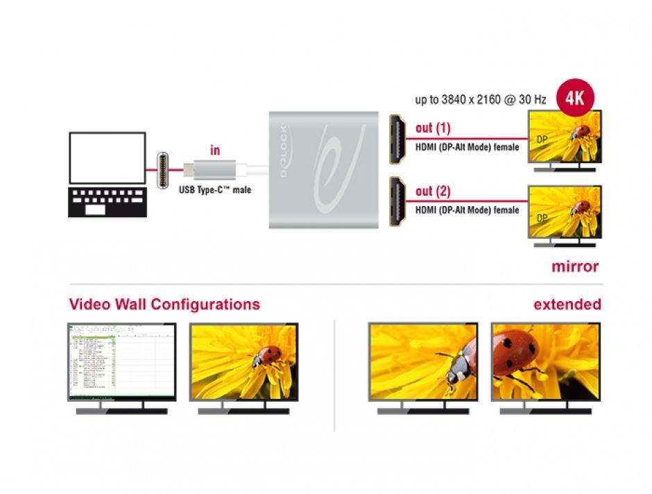 Imagine Multiplicator USB-C (DP Alt Mode) la 2 x HDMI 4K 30 Hz, Delock 87715