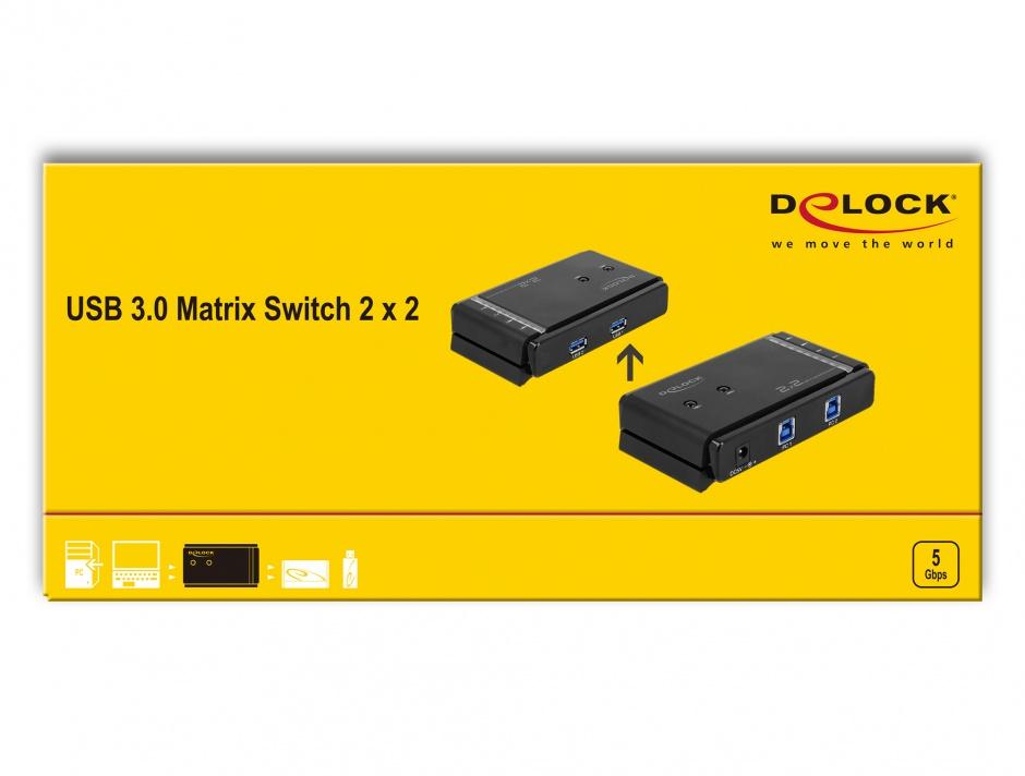 Imagine  Matrix Switch 2 PC x 2 periferice, Delock 87736