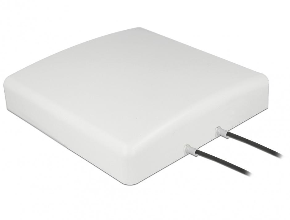 Imagine Antena exterioara LTE MIMO 2 x SMA Plug 8 dBi directionala + cablu RG-58 5m, Delock 89890
