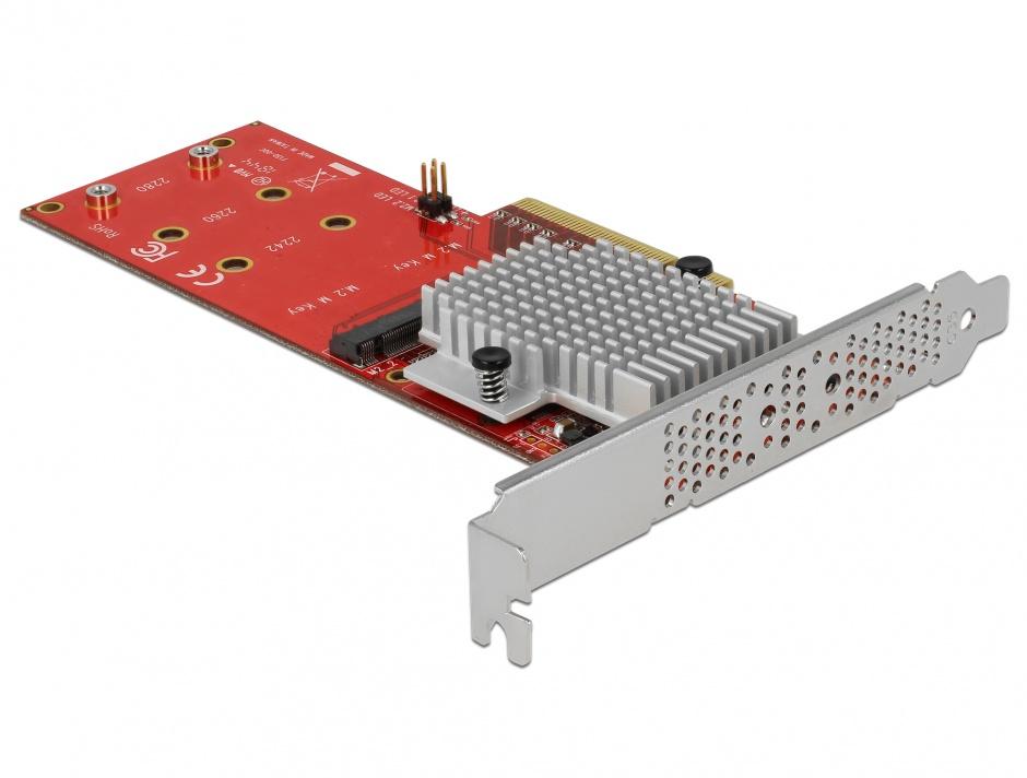 Imagine PCI Express cu 2 porturi interne NVMe M.2 Key M LPFF, Delock 90305