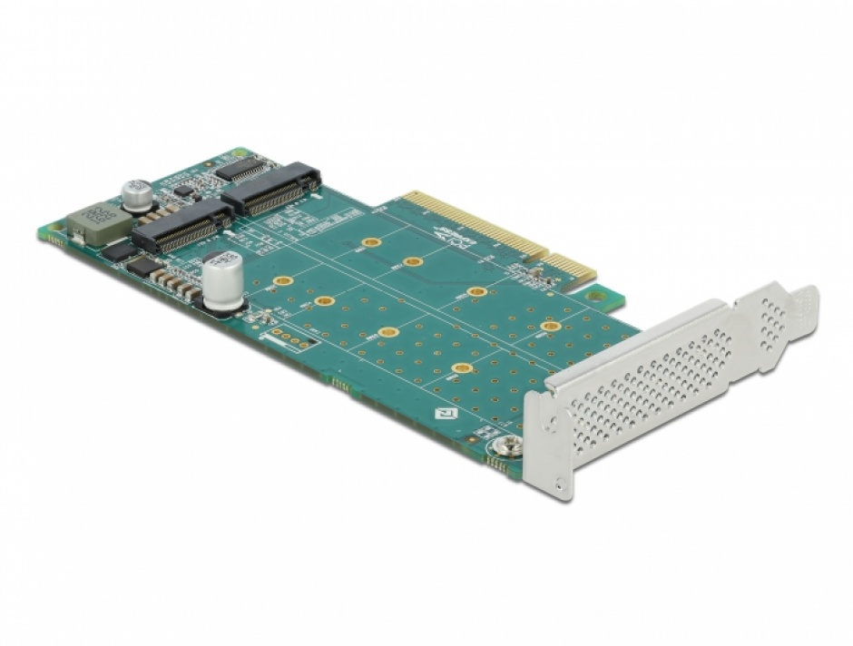Imagine PCI Express cu 2 porturi NVMe M.2 Key M - Bifurcation LPFF, Delock 89045