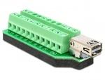 Adaptor Mini Displayport mama la bloc terminal 22 pini, Delock 65394