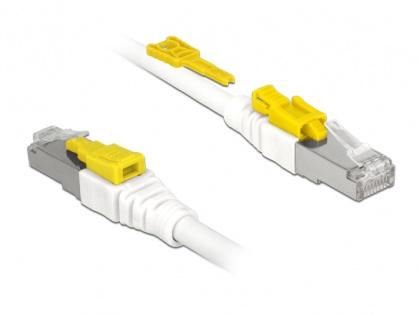 Cablu de retea RJ45 cat 6A cu sistem de blocare 3m, Delock 85333