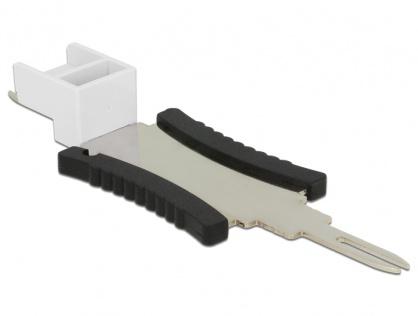 Cheie pentru securizare Keystone RJ45, Delock 86411