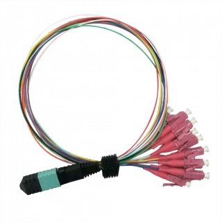 Cablu Fanout MPO - 12 x LC OM4 LSOH 2m, Value 21.99.1100